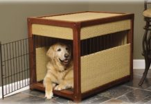 Best Indoor Dog House Reviews. Indoor Dog Kennel & Crate Price