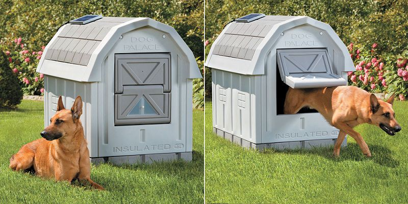 Best Insulated dog house & Heated dog house. Outdoor winter dog house