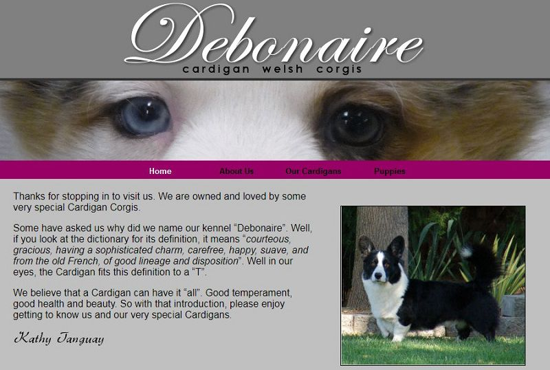 Debonaire Corgis - Breeder in New Jersey. Corgi puppies for sale in Debonaire kennel