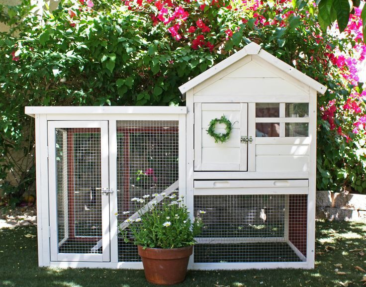 Best Indoor Rabbit Hutch | Cheap Outdoor Rabbit Hutch & Cage Reviews