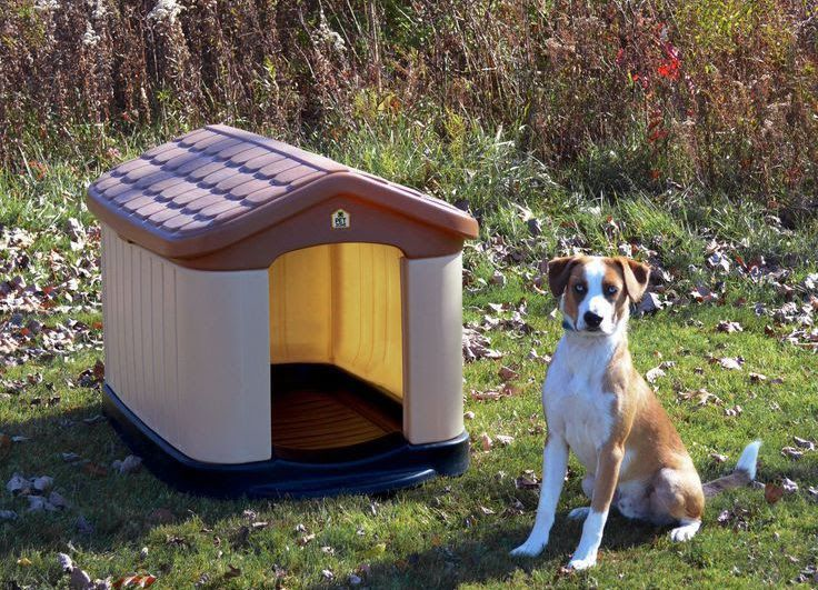 Best insulated dog house for Winter. Insulated heated dog house reviews