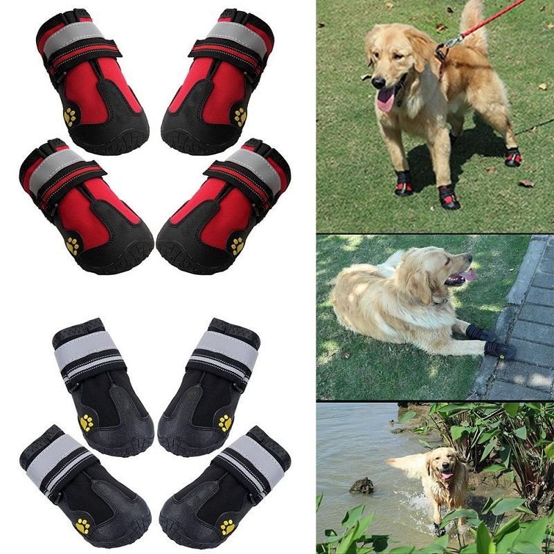 Best Waterproof Dog Boots that Actually Stay On Reviews