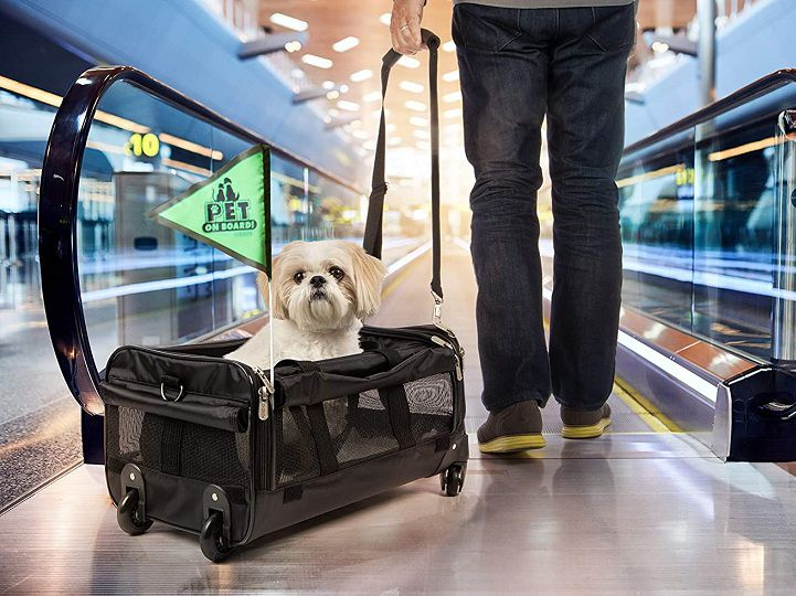 Best Airline Approved Pet (Dog and Cat) Carrier with Wheels reviews