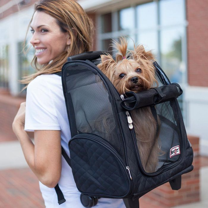 Best Dog Backpack Carrier for Large Dogs Reviews