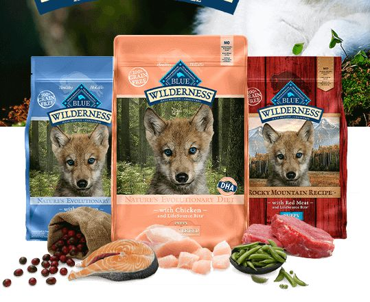 Best Dog Food for Pitbull Puppies to Gain Weight and Muscle
