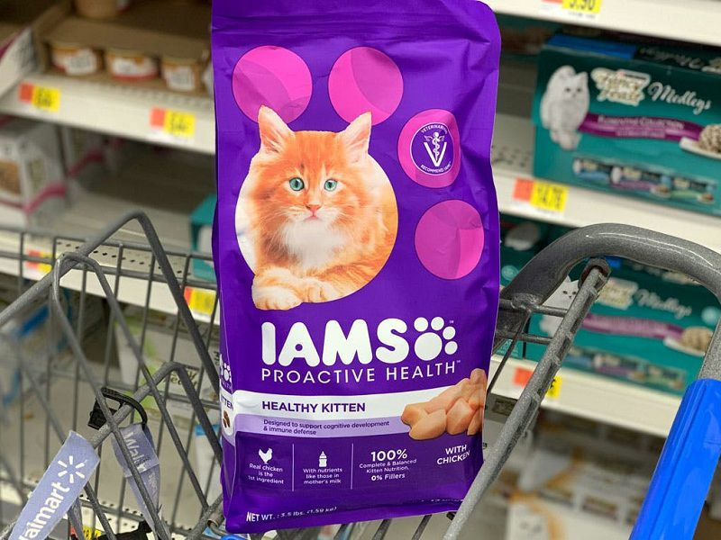 Picky cat needs to gain weight. Best cat food to gain weight for picky cat
