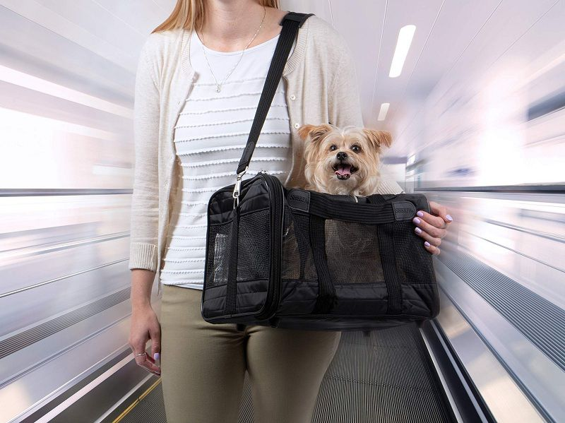 Best Airline Approved Pet Carriers in Cabin for Dog and Cat Reviews