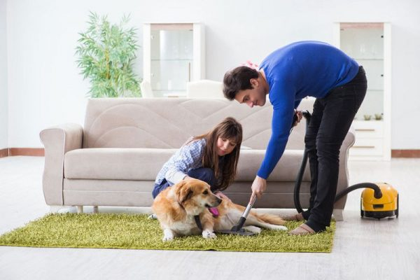 How to Vacuum Pet Hair: Things You Must Know