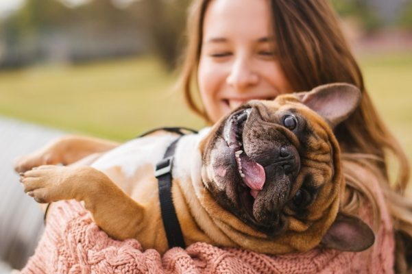 The Ultimate Guide to Finding the Right Dog Breeds For Your Family